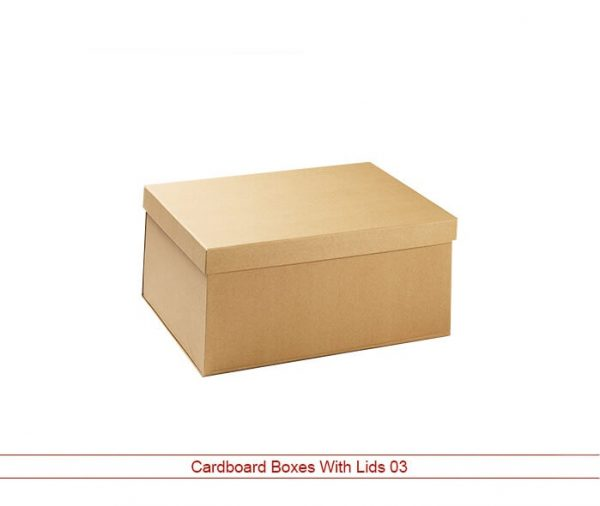 Cardboard Boxes Wholesale Lid