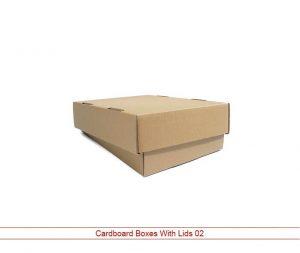 Cardboard Packaging With Lid 3