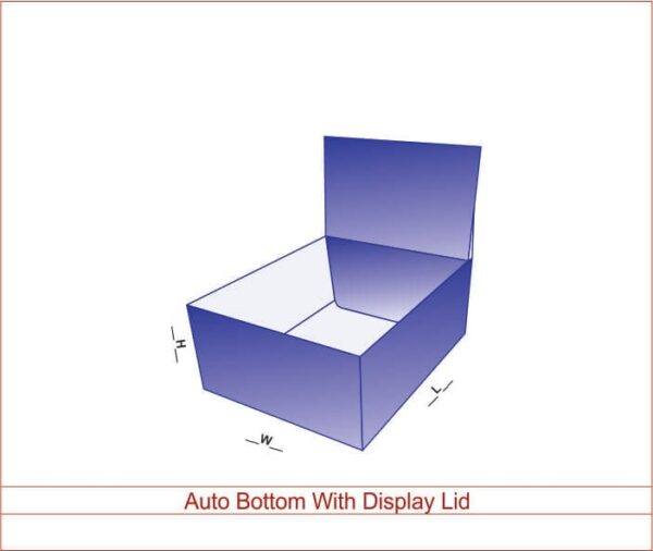 Auto Bottom With Display lid 02
